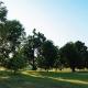 Norton Commons Oval Park